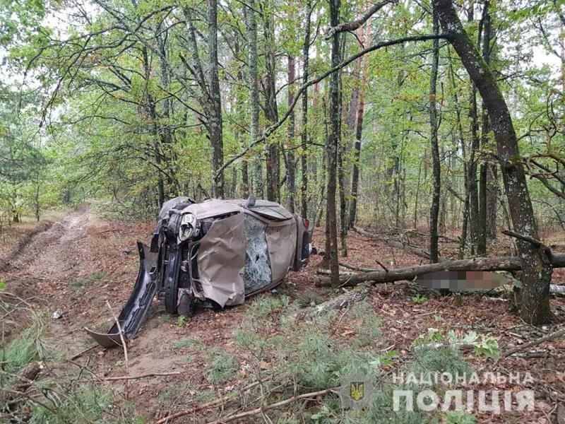 У Народицькому районі трапилася смертельна аварія, фото-2
