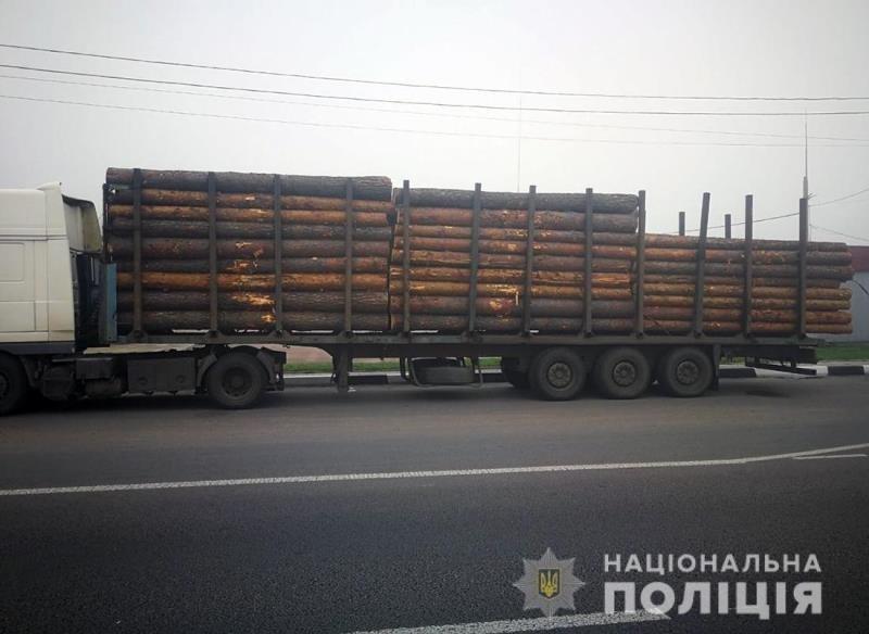 У Житомирському районі поліцейські виявили фуру з нелегальною деревиною, фото-1