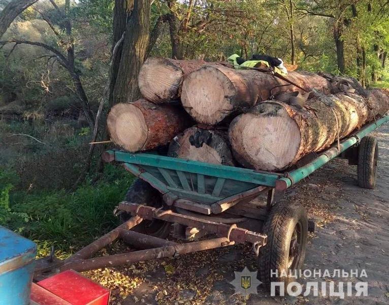 На Житомирщині поліцейські зупинили два незареєстровані трактори з нелегальним лісом, фото-4