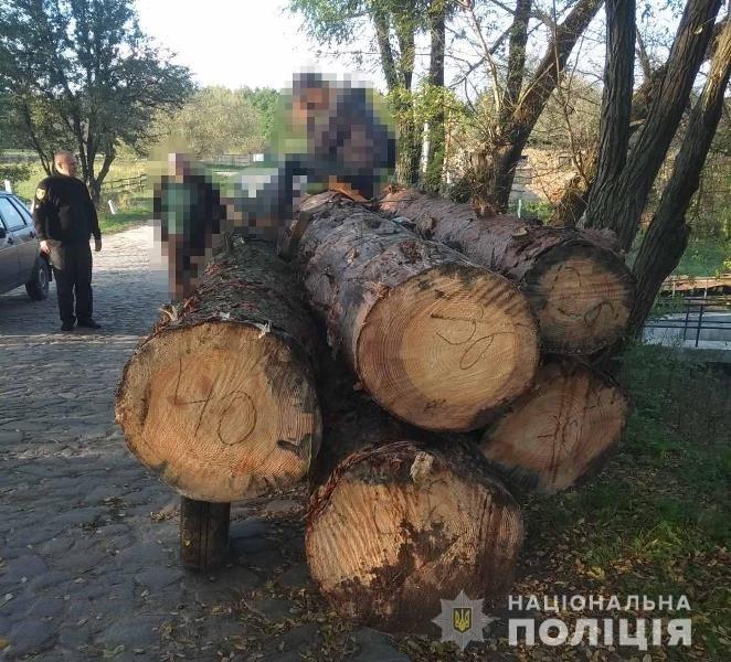 На Житомирщині поліцейські зупинили два незареєстровані трактори з нелегальним лісом, фото-3
