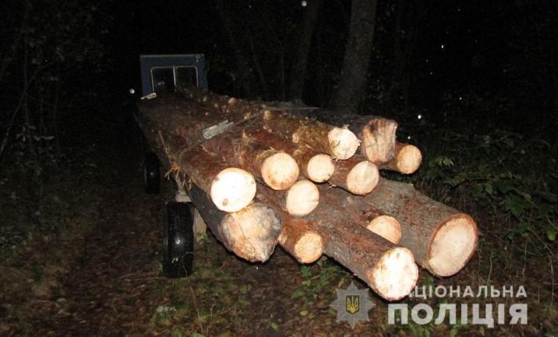 На Житомирщині поліцейські зупинили два незареєстровані трактори з нелегальним лісом, фото-1