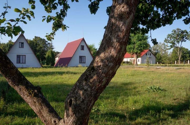 Колоритні околиці Житомира. ФОТО, фото-5