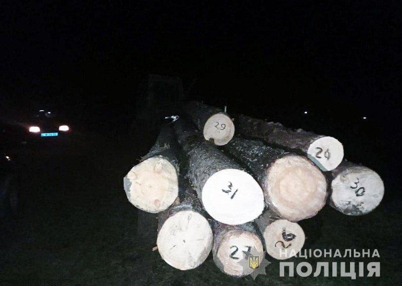 За добу в трьох районах Житомирщини поліцейські зафіксували незаконні оборудки з лісом, фото-1
