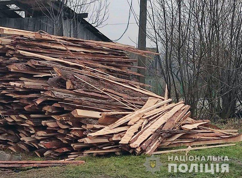 За добу в трьох районах Житомирщини поліцейські зафіксували незаконні оборудки з лісом, фото-5