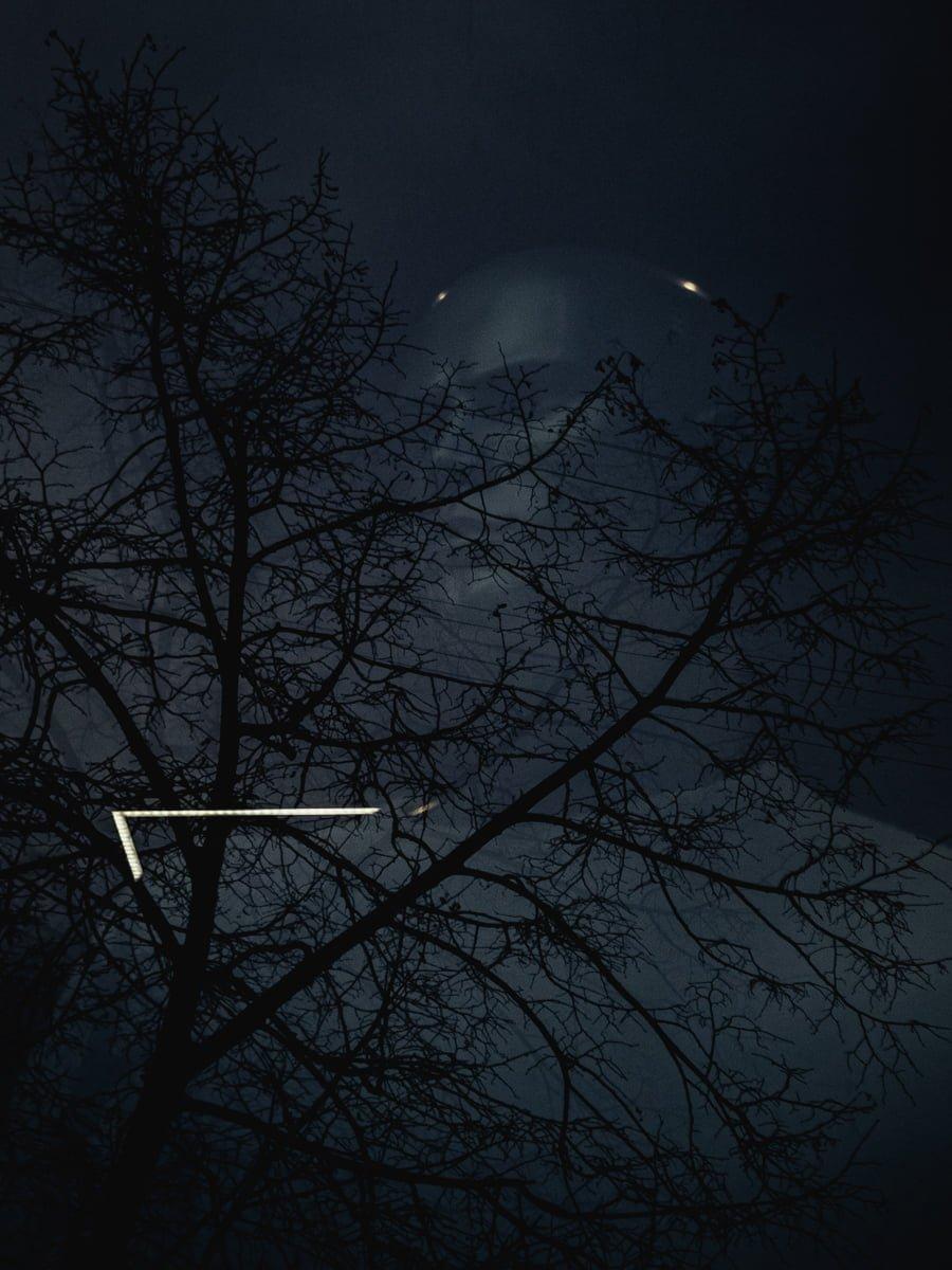 Миттєвості зими: прогулянка атмосферним Житомиром. ФОТО, фото-11