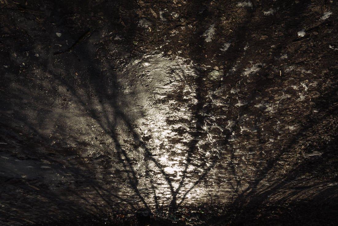 Миттєвості зими: прогулянка атмосферним Житомиром. ФОТО, фото-17