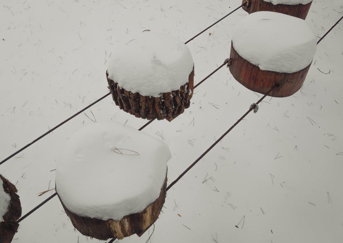 Миттєвості зими: прогулянка атмосферним Житомиром. ФОТО, фото-6