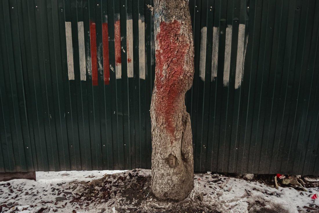 Миттєвості зими: прогулянка атмосферним Житомиром. ФОТО, фото-8